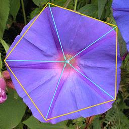 morada_pentagonal_1
